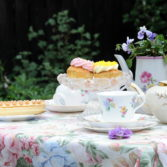Stithians Show July 17th 2017 Borlase Summer Tea Party and Prize Draw